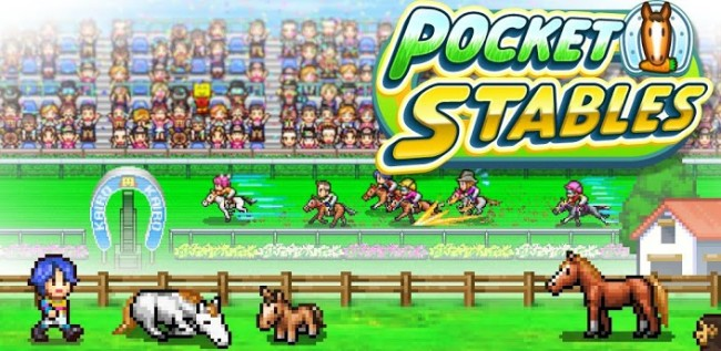 Pocket-Stables-Cheat